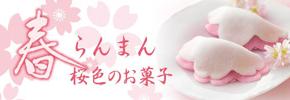 春らんまん桜色